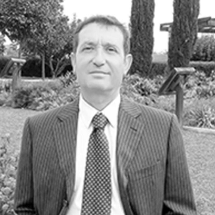 TOMÁS BAÑEGIL PALACIOS